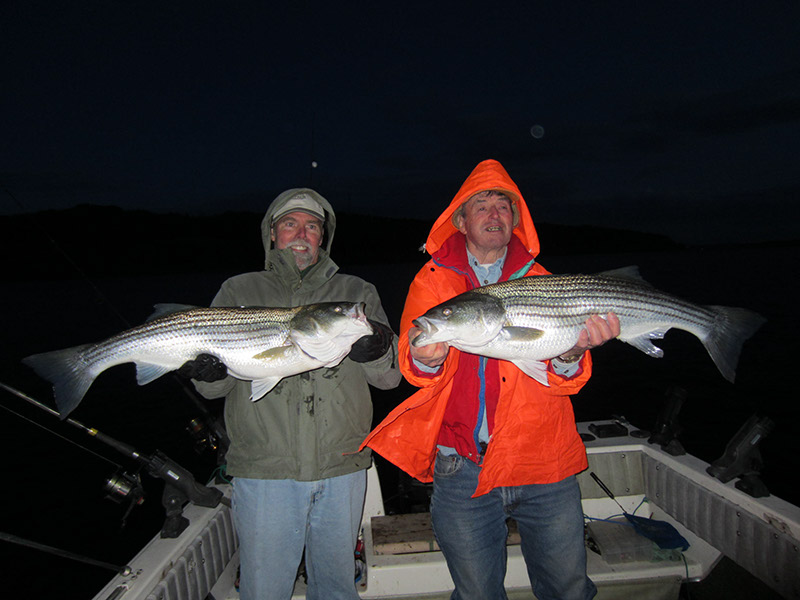 View the View the 2013 Striper Fishing on the Hudson River Photo Gallery