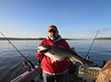 View the 2013 Striper Fishing on the Hudson River Photo Gallery